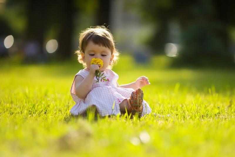 Народные средства от комаров подходящие детям